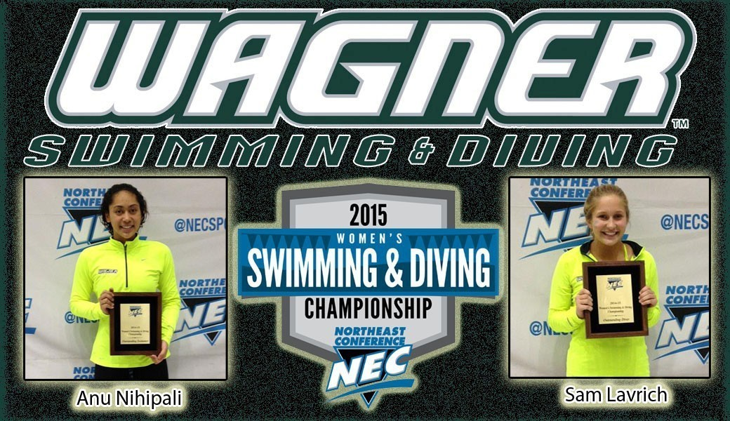 nec swimming championships