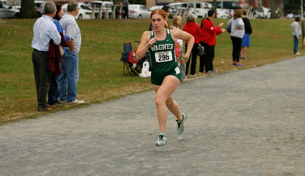 WXC Preview